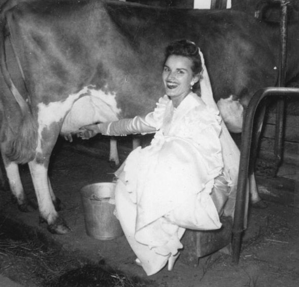 1952-Bride-with-Cow